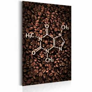 Plakat metalowy - Coffee Lovers: The Chemistry of Coffee [Allplate]