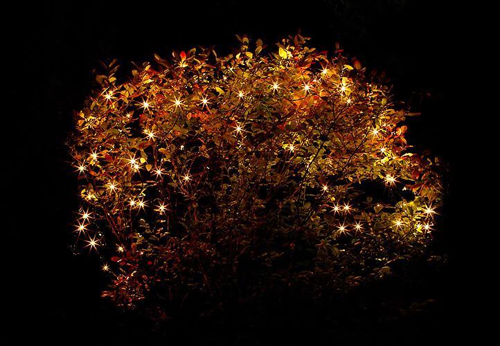 Lampki Ogrodowe 160 Led Ciepłe Białe Sieć