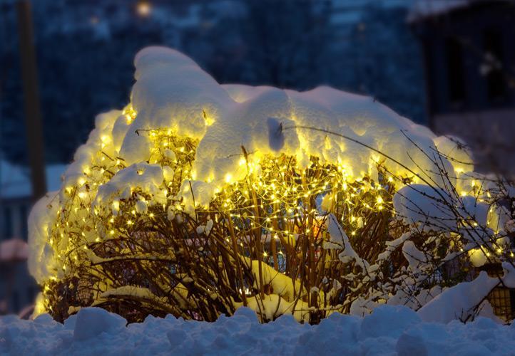 Lampki 100 Led Sieć Ledowa Siatka Możliwość łączenia